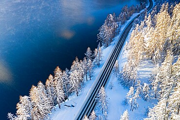 Empty road crossing the winter forest covered with snow beside Lake Sils, aerial view, Graubunden canton, Engadin, Switzerland