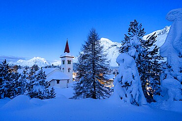 Chiesa Bianca and trees covered with snow at dusk, Maloja, Bregaglia, canton of Graubunden, Engadin, Switzerland