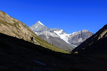 Hiker climbs the ridge and in the background the Weisshorn, Tasch Valley, Zermatt, Canton of Valais, Pennine Alps, Swiss Alps, Switzerland, Europe