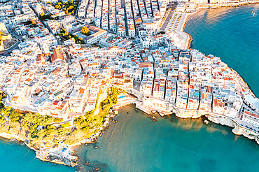 Aerial view of white buildings of Vieste by the crystal sea, Foggia province, Gargano National Park, Apulia, Italy, Europe - 1179-5072
