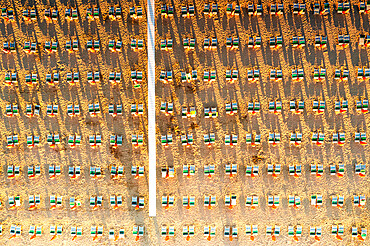 Aerial view of rows of lounge chairs and sunbeds on empty sand beach, Vieste, Foggia province, Gargano, Apulia, Italy