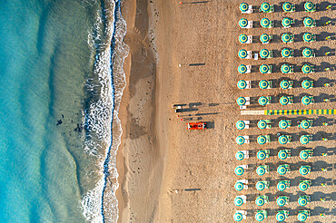 Aerial view of beach umbrellas and sunbeds in tidy rows during summer, Vieste, Foggia province, Gargano, Apulia, Italy