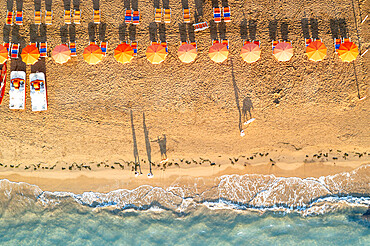 Aerial view of sunshades in a row on sand beach washed by the crystal sea, Vieste, Foggia province, Gargano, Apulia, Italy