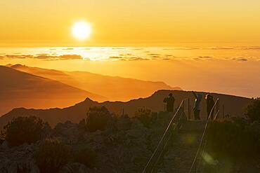 Tourists photographing sunset with smartphone from Pico Ruivo mountain peak, Madeira, Portugal, Atlantic, Europe