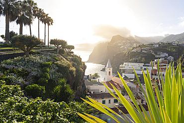 Sunset over the white buildings of Camara de Lobos framed by plants, Madeira island, Portugal