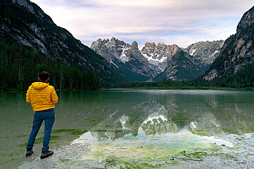 Rear view of hiker man admiring Monte Cristallo reflecting in lake Landro (Durrensee) at sunrise, Dolomites, South Tyrol, Italy