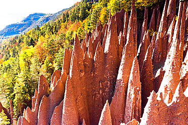 Spiked rocks of the earth pyramids in autumn, Longomoso, Renon (Ritten), Bolzano, South Tyrol, Italy, Europe