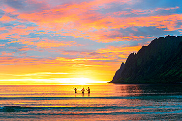 Cheerful woman with friends have fun in the sea during the midnight sun, Ersfjord, Senja, Troms county, Norway