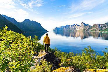Rear view of photographer admiring the Mefjord blue water standing on rocks, Senja, Troms county, Norway