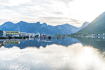 Fishing boats moored in the harbor of Senjahopen along Mefjord at dawn, Senja, Troms county, Norway