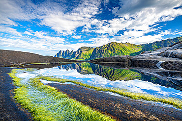 Seaweed on cliffs with mountains reflected in water on background, Tungeneset, Senja, Troms county, Norway