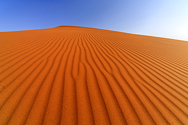 The shapes of sand constantly shaped by the wind, Deadvlei, Sossusvlei, Namib Desert, Namib Naukluft National Park, Namibia, Africa