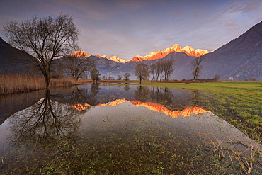Natural reserve of Pian di Spagna  flooded with snowy peaks reflected in the water at sunset, Valtellina, Lombardy, Italy, Europe