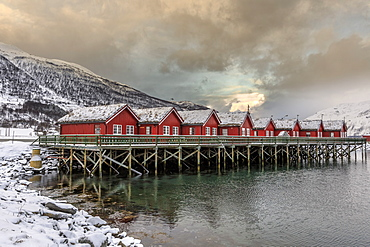 Typical red wooden huts of fishermen in the snowy and icy landscape of Lyngen Alps, Troms, Lapland, Norway, Scandinavia, Europe - 1179-908