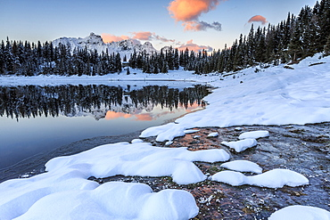 Woods and snowy peaks are reflected in Lake Palu at sunrise, Malenco Valley, Valtellina, Lombardy, Italy, Europe