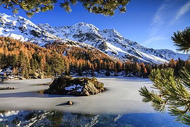 Autumn reflections at Saoseo Lake still partially frozen, Poschiavo Valley, Canton of Graubuenden, Switzerland, Europe
