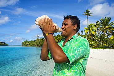 Local man blowing a huge conch, Aitutaki lagoon, Rarotonga and the Cook Islands, South Pacific, Pacific