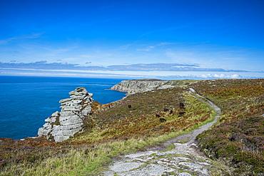 Island of Lundy, Bristol Channel, Devon, England, United Kingdom, Europe