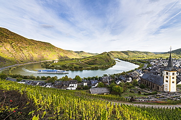 Cruise ship on the Moselle River near Bremm, Moselle, Rhineland-Palatinate, Germany, Europe