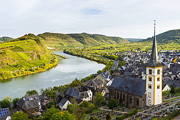Vineyards above Bremm on the Moselle River, Rhineland-Palatinate Germany, Europe
