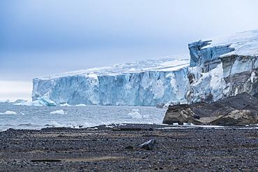 Champ Island, Franz Josef Land archipelago, Arkhangelsk Oblast, Arctic, Russia, Europe