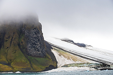 Massive bird cliff, Champ Island, Franz Josef Land archipelago, Arkhangelsk Oblast, Arctic, Russia, Europe