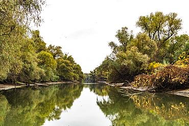 Danube Delta in Romania, Europe