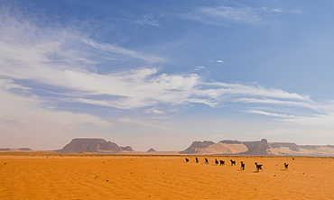 Desert scenery in northern Chad, Africa