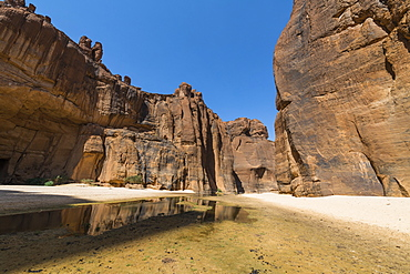 Guelta d'Archei waterhole, Ennedi Plateau, UNESCO World Heritage Site, Ennedi region, Chad, Africa
