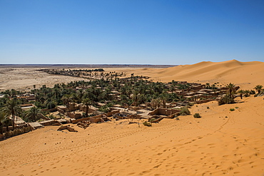 View over the palm oasis of Beni Abbes, Sahara, Algeria, North Africa, Africa