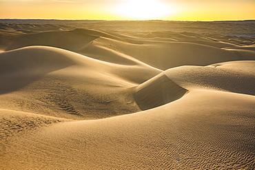 Sunset in the giant sand dunes of the Sahara Desert, Timimoun, western Algeria, North Africa, Africa