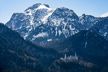 Castle Neuschwanstein, with the Alps behind, Schwangau, Bavaria, Germany, Europe