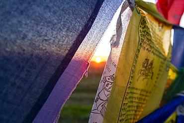 Buddhist prayer flags at the Geden Sheddup Choikorling Monastery, Elista, Republic of Kalmykia, Russia, Eurasia