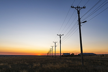 Electric lines at sunset in Elista, Republic of Kalmykia, Russia, Eurasia
