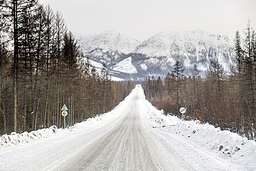 Road of Bones in the Suntar-Khayata mountain Range, Sakha Republic (Yakutia), Russia, Eurasia