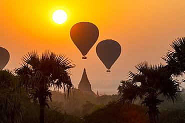 Hot air balloons over Bagan at sunrise, Bagan (Pagan), Myanmar (Burma), Asia