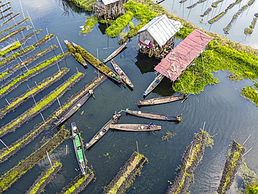 Aerial by drone of canoes in the floating gardens, Inle Lake, Shan state, Myanmar (Burma), Asia
