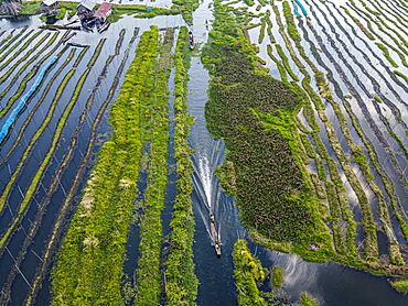 Aerial of the floating gardens, Inle Lake, Shan state, Myanmar (Burma), Asia