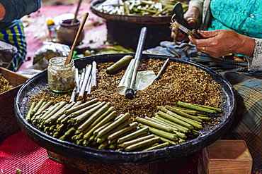 Cigar and cigarette hand made rolling, Inle Lake, Shan state, Myanmar (Burma), Asia