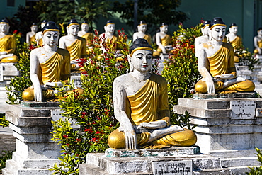 Buddhas lining up, Aung Zay Yan Aung Pagoda, Myitkyina, Kachin state, Myanmar (Burma), Asia