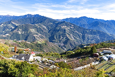 Tea plantations in the picturesque highlands of Nantou County, Taiwan, Asia