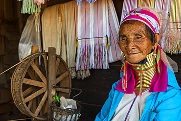 Portrait of a Padaung woman, (Giraffe woman) (Long-necked woman), with a traditional weaving chair, Loikaw area, Panpet, Kayah state, Myanmar (Burma), Asia