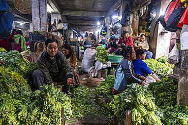 Market women in the Market in Aizawl, Mizoram, India, Asia