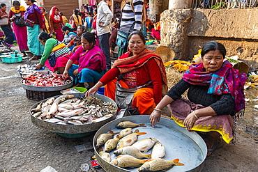 Colourfully dressed women vendors selling fish, Ima Keithel women's market, Imphal, Manipur, India, Asia