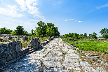 Archaeological Park of Dion, Mount Olympus, Greece, europe