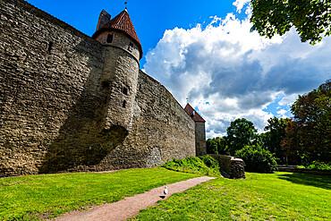 City walls of Tallinn, UNESCO World Heritage Site, Estonia, Europe