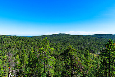 View from Bear's Den Tafone Rock over the Taiga, Lapland, Inari, Finland, Europe