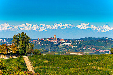 Wineyards before the Alps in the Unesco world heritage site Piedmont, Italy