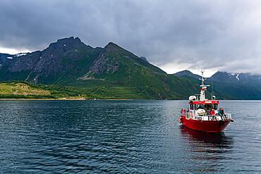 Little ferry bringing tourists to Svartisen glacier, Kystriksveien Coastal Road, Norway