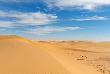 Sand dune in the Tenere Desert, Sahara, Niger, Africa